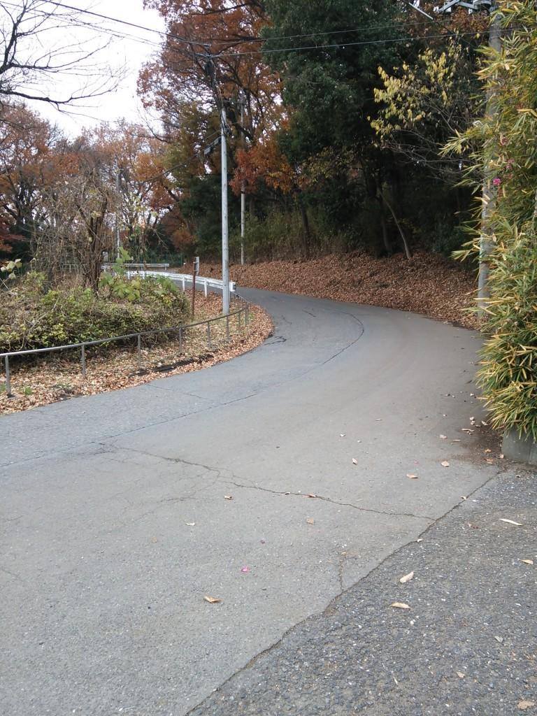 クロスケの家 狭山湖駐車場から坂道を登っていきます