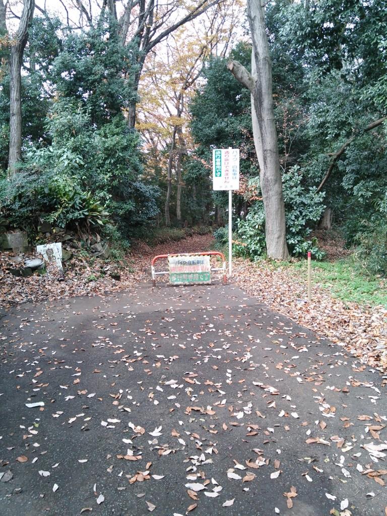 坂道を登り切って突き当りを左に行くと歩行者専用のハイキングコースがあります。