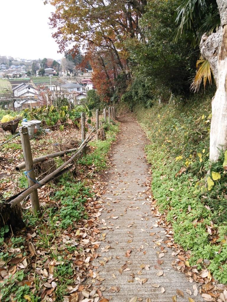 自然の中にある細い山道を下っていきます。