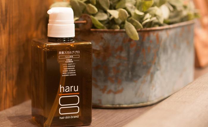 haru【100%天然由来】白髪、抜け毛、薄毛をケアできるオールインワンノンシリコンシャンプー