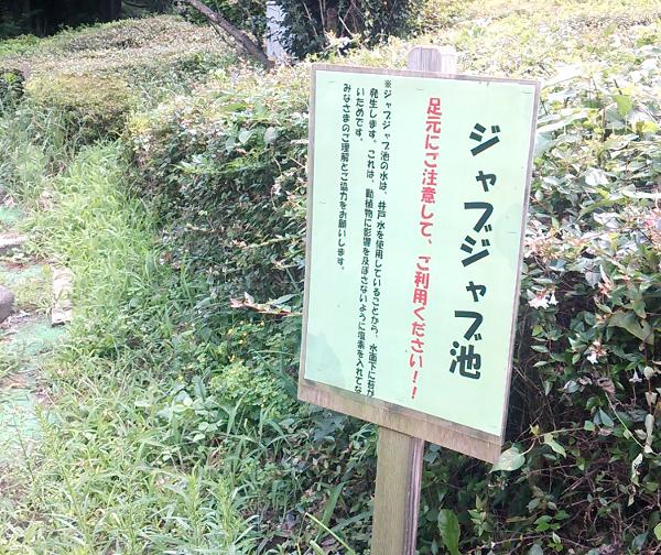 智光山公園 こども動物園 じゃぶじゃぶ池